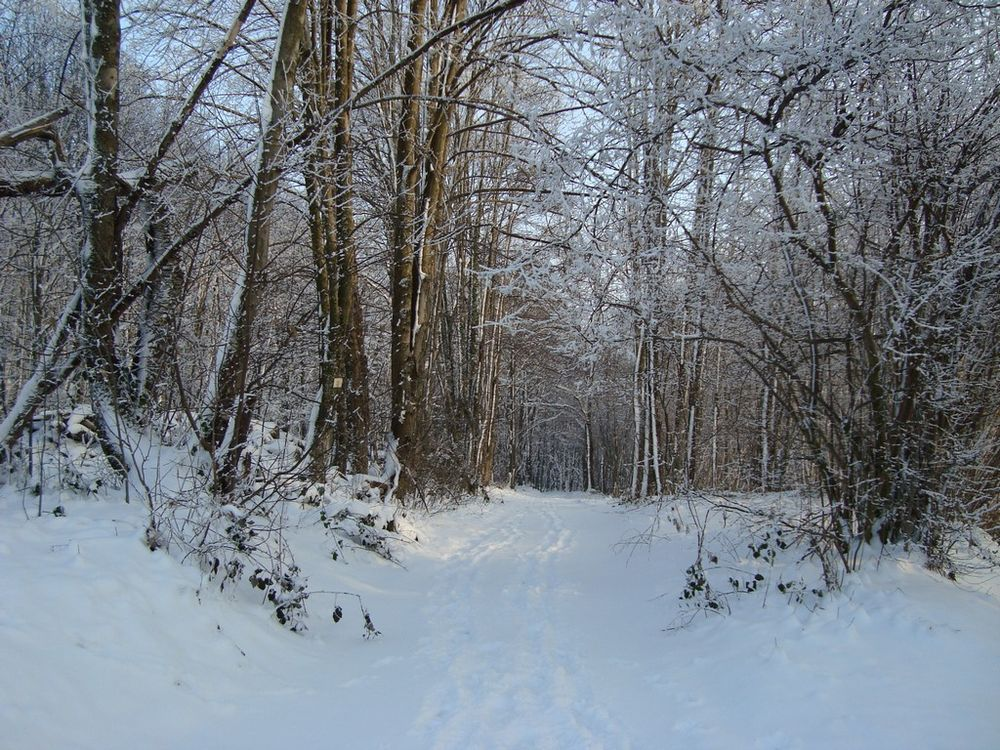 Loi montagne et hébergement des saisonniers