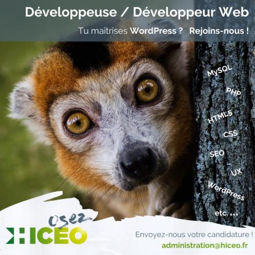 [OFFRE TERMINÉE] Offre d'emploi : développeuse - développeur Web