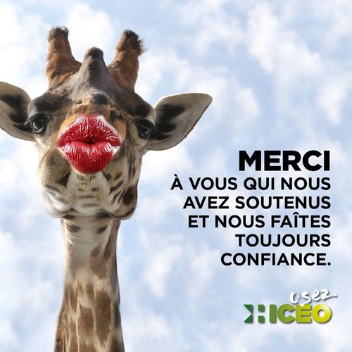 hiceo remercie ses clients